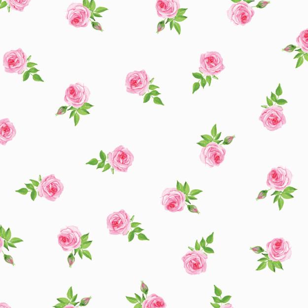 Mini Rosas-955